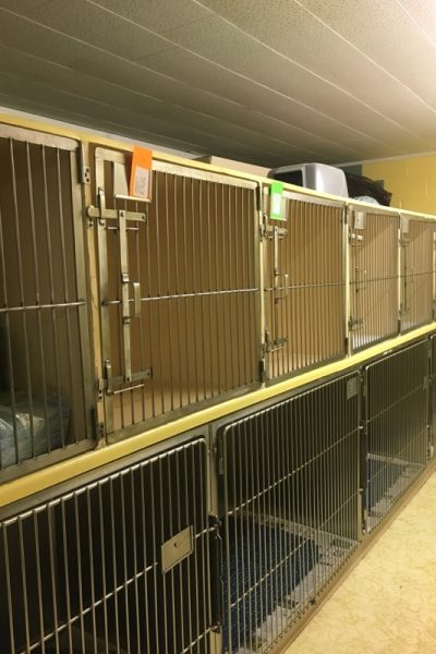 Kennel Cages